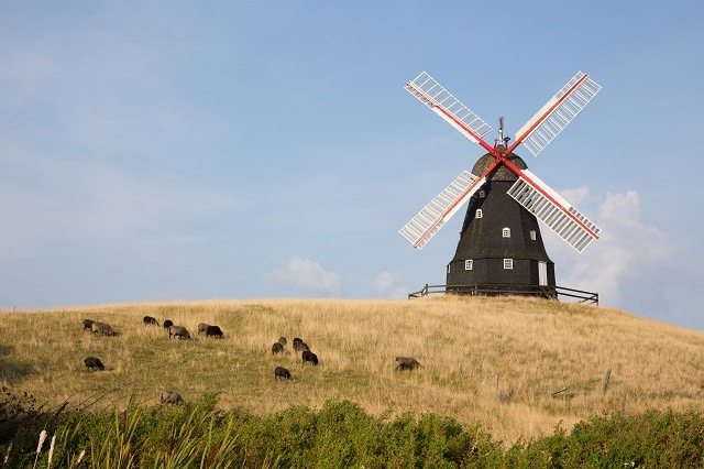 Denmark is known for its beautiful array of windmills and agriculture (Image credit: Bildagentur Zoonar GmbH / Shutterstock.com)