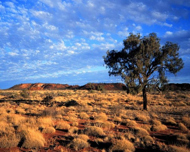 The Australian outback. The country faces a threat to workable land due to increased desertification