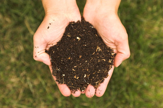 what is peat free compost used for