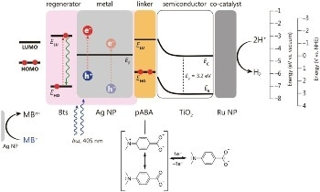 Efficient Conversion of Light Energy into Chemical Energy