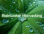 Renewable Technology: Rainwater Harvesting