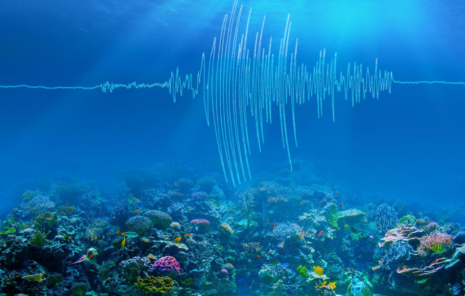 The Impact of Undersea Earthquakes on Climate Change