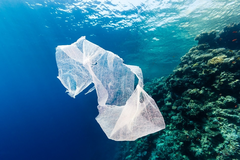 Study Shows How Climate Change Affects Distribution of Marine Microplastic Litter