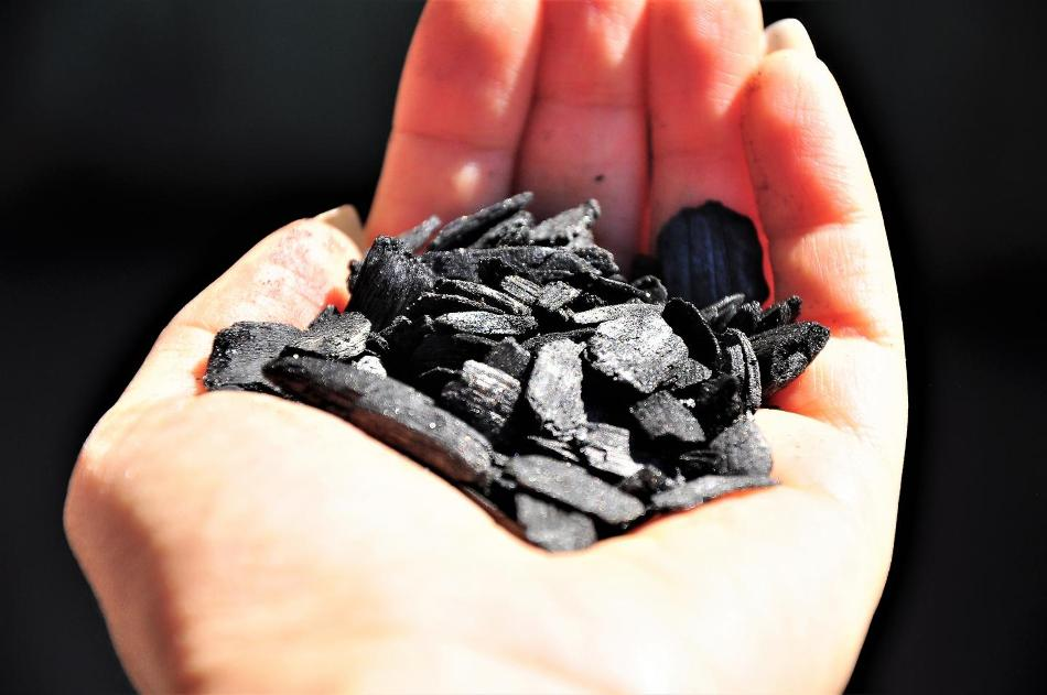 Biochar Could Enhance Crop Growth and Reduce Air Pollution
