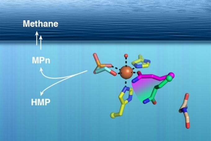 Researchers Solve Ocean Methane Puzzle