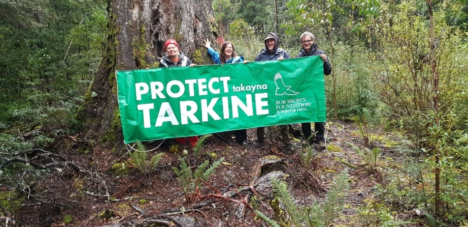 New Tarkine Forest Occupation Established to Prevent Logging