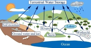 Incorporating Current Decadal Climate Prediction Could Improve Baseline Skill of Terrestrial Water Storage Prediction