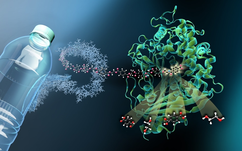 Researchers Solve the Structure of Key Enzyme for Sustainable Recycling of PET Polymer