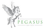Pegasus Agritech Implements Soilless Farming Technology to Address Food and Water Scarcity Issues