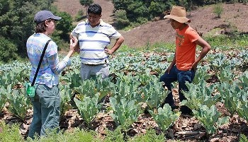 Guatemala Farmers Provided with Climate-Smart Agriculture Strategies and Water Management