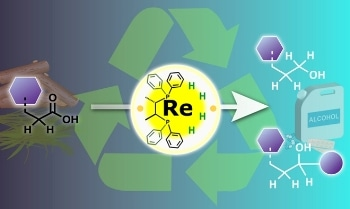 Nagoya University Researchers Transform Metal Catalysis for Sustainable Future