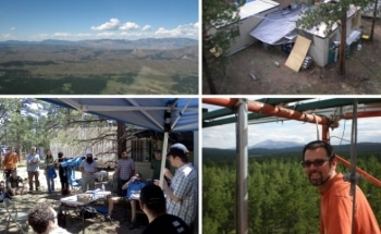 Colorado Forest Study Offers Clearest Idea on Atmosphere's Organic Chemistry
