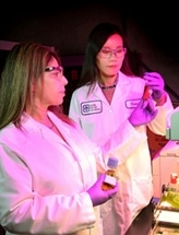 Using Bioengineered Bacteria to Produce Biofuel and Valuable Chemicals from Plant Matter
