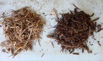 New Steam Drying Technique Could Make Efficient Use of Biomass