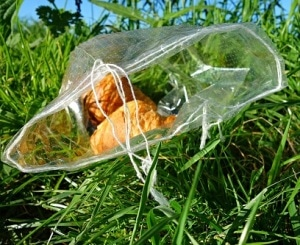 UK Researchers Develop Edible, Biodegradable Food Packaging Film Derived from Plants
