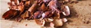 Converting Cocoa Bean Waste into Bio-Fuel for West African Villages
