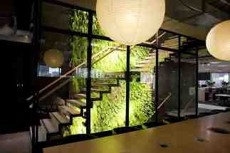 Benefits of Greenwalls in the Workplace