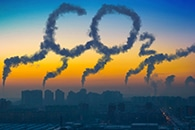 Rising CO2 Levels Will Cause Severe Ecosystem Effects