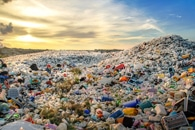 Ecologists Raise Alarm on Prevalence of Plastic Pollution in Aquatic Ecosystems