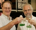 Using Bacteria and Sunlight to Produce Clean Biofuel