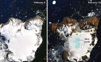 A Heat Wave in Antarctica Has Melted 20% of an Island's Snow in 9 Days