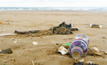 Single-use Plastics to be Banned in Wales from 2021